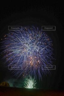 空の花火の写真・画像素材[3243725]