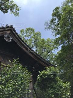 歴史ある屋根の写真・画像素材[3303040]