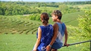 辺り一面に広がる茶畑を眺めながらの写真・画像素材[2382080]