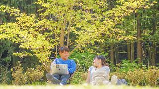 山奥の自然溢れる公園でピクニックの写真・画像素材[3144493]