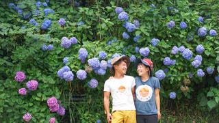 紫陽花をバックに仲良しカップルが笑顔の写真・画像素材[3385209]