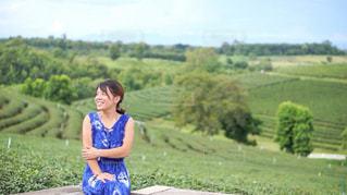 茶畑をバックに座る女性の写真・画像素材[3435917]