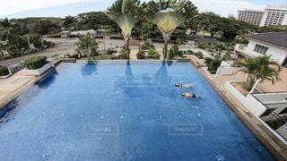 プールで背泳ぎ対決の写真・画像素材[3553272]