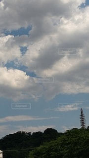 空の雲の群の写真・画像素材[3273763]