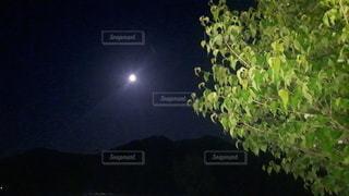 夜空の写真・画像素材[3286920]