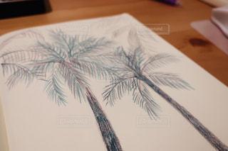 テーブル,ペン,ヤシの木,お絵描き,色鉛筆,紙,おえかき,お絵かき,色えんぴつ,スケッチ,スケッチブック,図面,いろえんぴつ,おうち時間,水彩色鉛筆