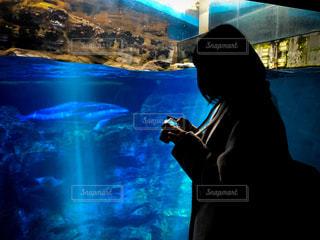 カメラ女子と水族館の写真・画像素材[3251779]