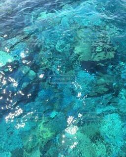 八重山Blueの写真・画像素材[3543597]