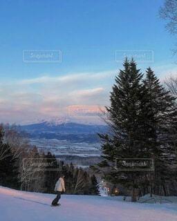 冬,雪,山,スキー,運動,スノーボード,斜面,ウィンタースポーツ,バックカントリー,フリースタイル,スプルース