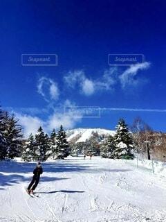 自然,空,冬,雪,屋外,山,樹木,スキー,運動,スキー場,スノーボード,斜面,ウィンタースポーツ,バックカントリー,日中,フリースタイル