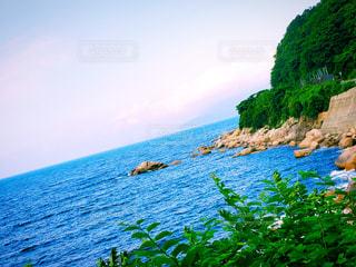 海の写真・画像素材[3375701]