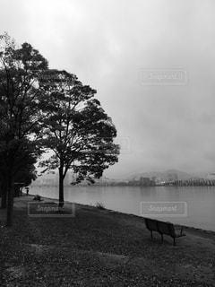 秋の湖畔にての写真・画像素材[854525]