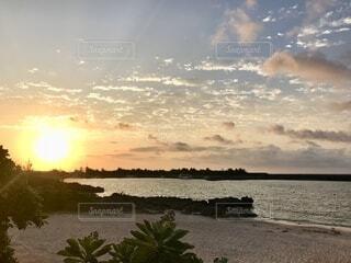 海,空,屋外,朝日,ビーチ,水面,海岸,樹木,正月,お正月,日の出,新年,初日の出