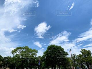 神社の空の写真・画像素材[4302364]