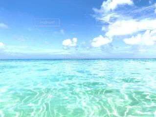 透明な海の写真・画像素材[4706527]