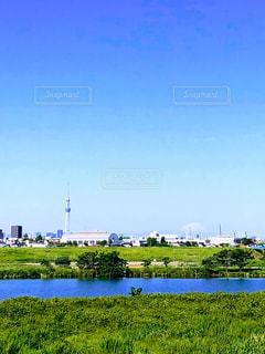 江戸川から望むスカイツリーと富士山の写真・画像素材[3261219]