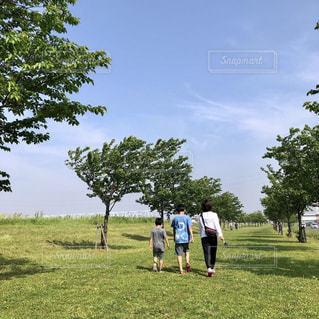 コロナで休校中の子供達と、朝の散歩の写真・画像素材[3262538]