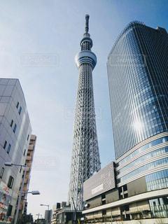 東京スカイツリーの写真・画像素材[3268033]