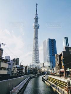 水上に東京スカイツリーを望むの写真・画像素材[3272635]