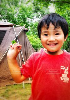 四つ葉のクローバーと少年の写真・画像素材[3284865]