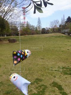 公園 - No.458988