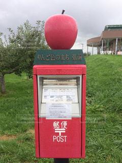 No.527761 赤