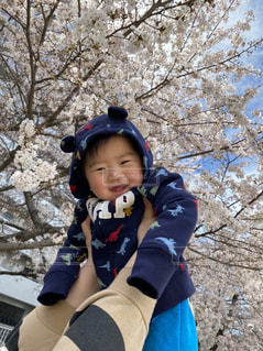 春の写真・画像素材[3295912]