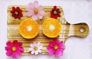 オレンジとコスモスの写真・画像素材[3856121]