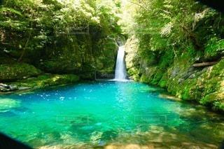 神秘的な秘密の滝の写真・画像素材[3277630]