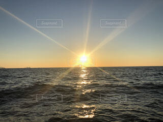自然,風景,海,空,鳥,屋外,太陽,朝日,幻想的,水面,海岸,水平線,光,正月,幸せ,お正月,リフレクション,日の出,新年,幸福,奇跡,初日の出,幻想,幸運,穏やか,ホリディ