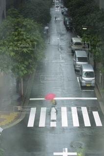 通りを走る車の写真・画像素材[3669282]