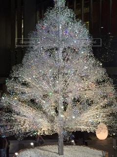 建物の前に座っているクリスマスツリーの写真・画像素材[3976965]