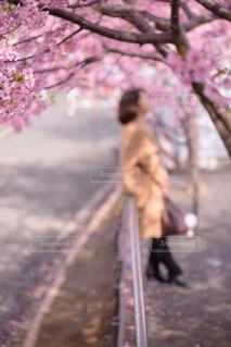 木の前に立っている人の写真・画像素材[4271781]