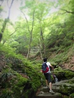 沢登りの写真・画像素材[3575075]