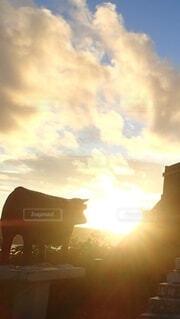 朝日,正月,展望台,お正月,宮古島,日の出,新年,初日の出,インギャーマリンガーデン,牛のモニュメント,御願山