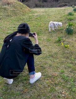 白いスニーカーと白い犬の写真・画像素材[4410833]
