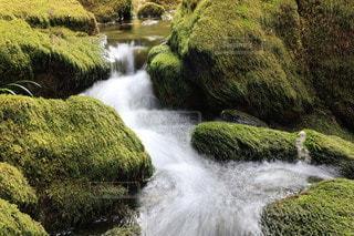 苔むした岩と綺麗な沢の写真・画像素材[3608261]