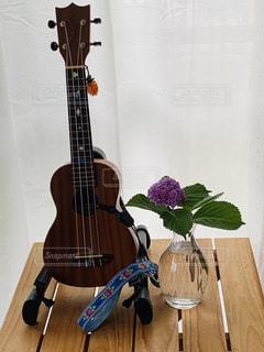 雨音とウクレレと紫陽花の写真・画像素材[3285037]