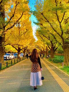 木の隣に立っている人の写真・画像素材[3898480]