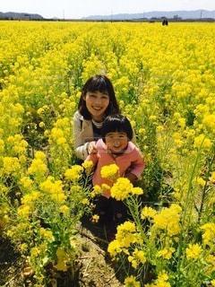 菜の花畑にての写真・画像素材[3289927]
