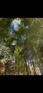ぽっかり見える空の写真・画像素材[3286924]