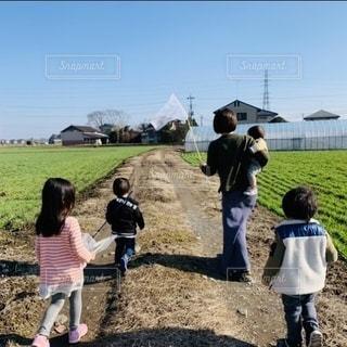 虫さんいないね〜の写真・画像素材[3297452]