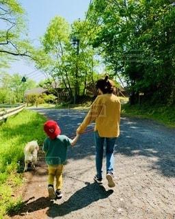 犬とお散歩するママと男の子の写真・画像素材[3310859]