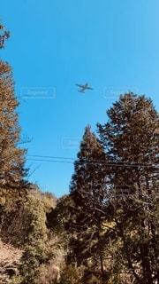 澄んだ空飛行機が気持ち良さそうの写真・画像素材[3321601]
