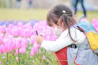 お花の撮影の写真・画像素材[4002877]