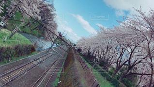 JR,山形市,霞城公園