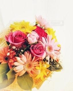 薔薇とガーベラの花束の写真・画像素材[3297468]