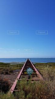 青い空へのびる橋の写真・画像素材[3328352]