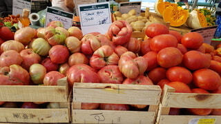色んな種類のトマトの写真・画像素材[3672896]