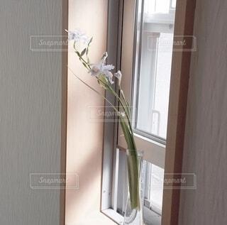 小窓とシャガ一輪の写真・画像素材[4328436]